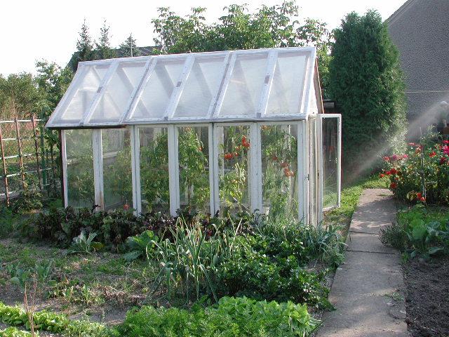 Gartengewächshaus
